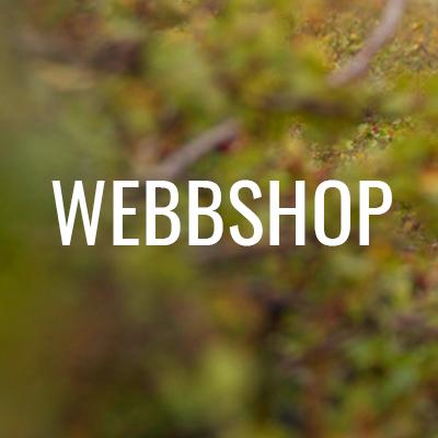 Till webbshop